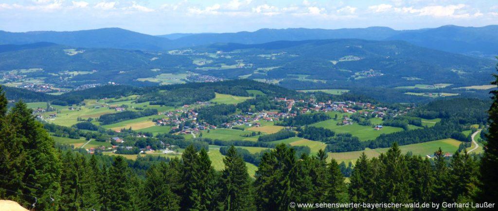 kollnburg-rundwanderwege-pröller-berg-aussichtspunkt-bayerischer-wald