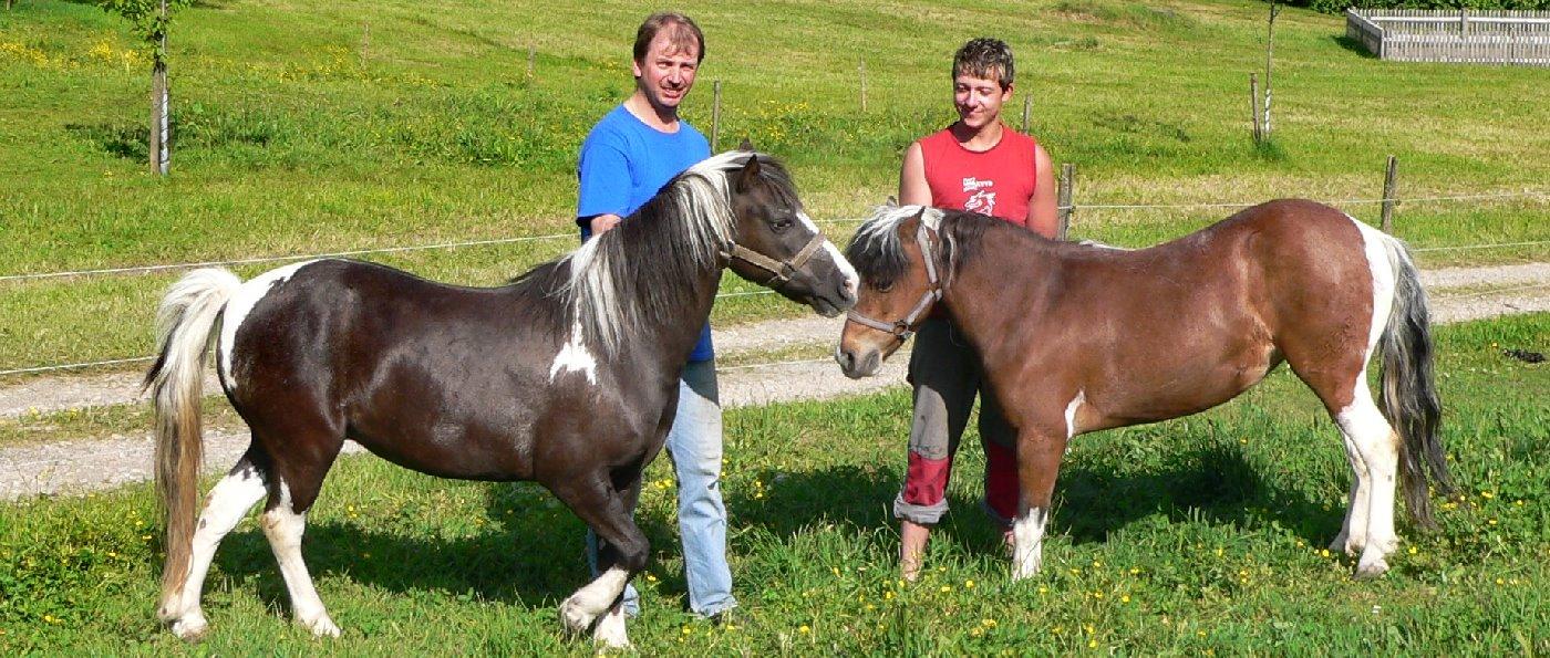 kopp-bayerischer-wald-urlaub-bauernhof-kostenlos-ponyreiten