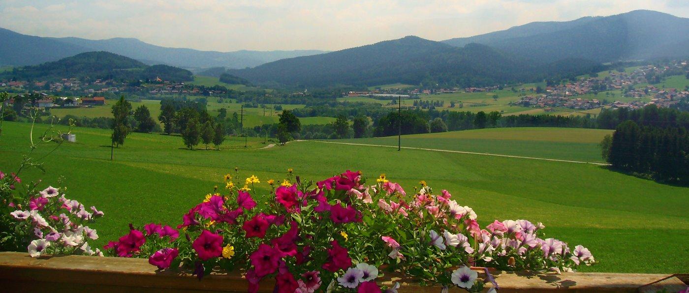 Bayerischer Wald Bauernhof Ferienwohnung mit Spülmaschine