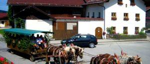 kroner-rinchnach-bauernhof-mit-pferden-bayerischer-wald
