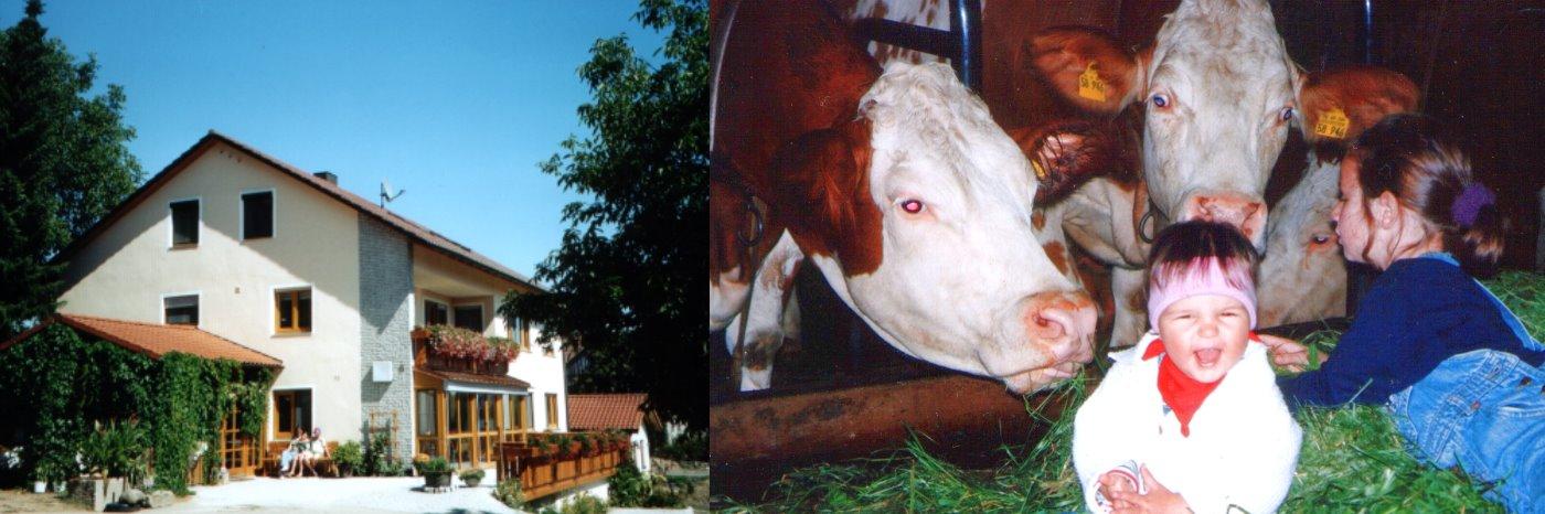 lasserhof-kinderland-babybauernhof-bayerischer-wald-familienurlaub