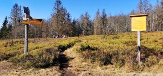 lindberger-schachten-wanderung-nationalpark-rundwanderweg