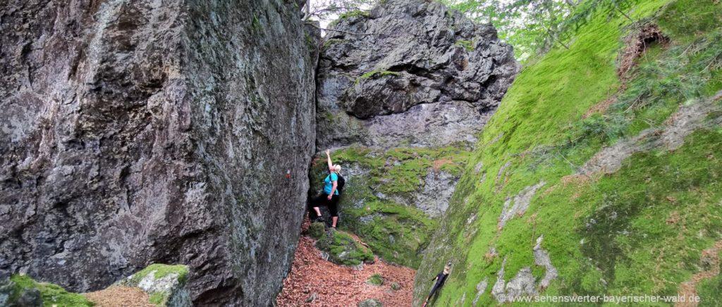 Wanderweg im Lixenrieder Felsenpark Cham in der Oberpfalz