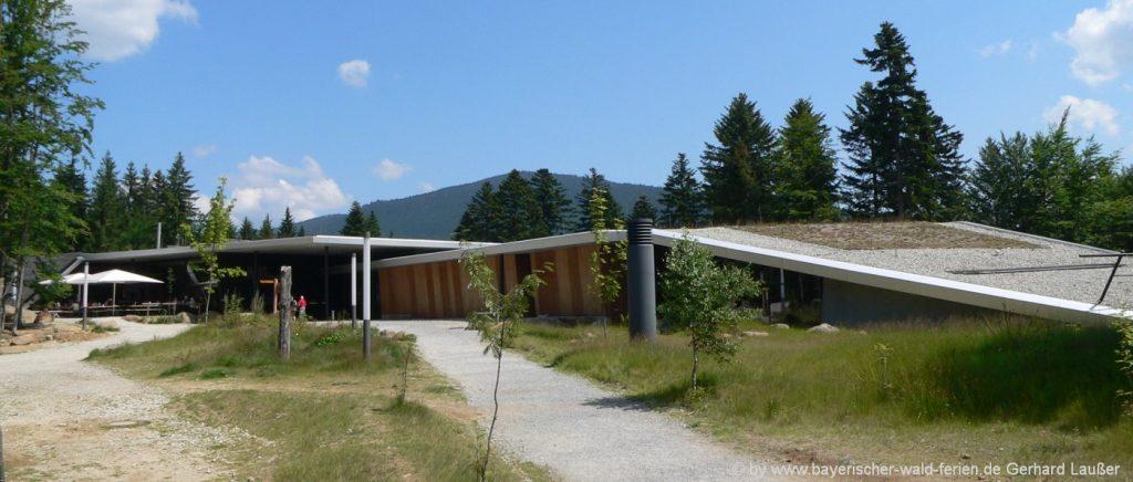 Nationalpark Besucherzentrum Falkenstein mit Haus zur Wildnis Ludwigsthal