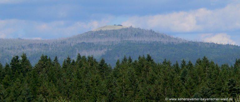 lusen-bayerischer-wald-berg-vom-rachel-aus-gesehen-panorama-1400