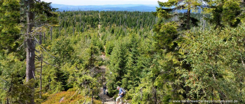 Wandern zum Aussichtspunkt Lusen Gipfel über Himmelsleiter