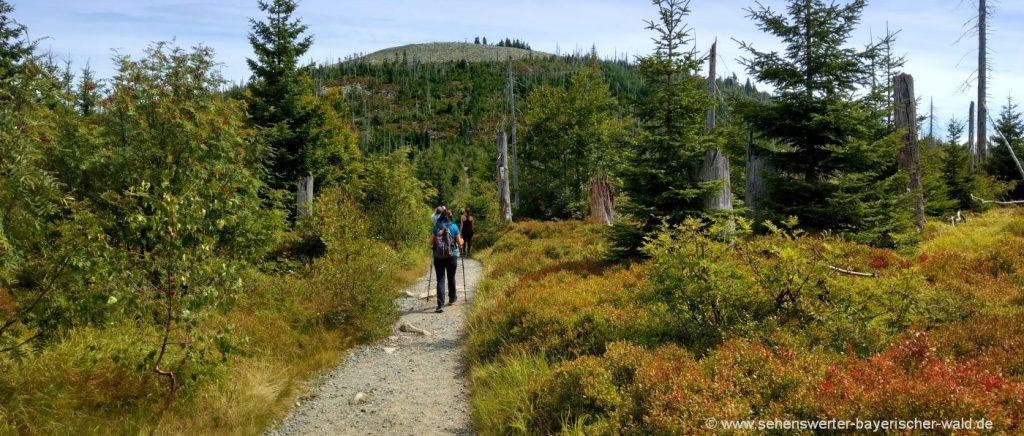 Lusen Wanderung Bayerischer Wald Berggipfel Blockmeer