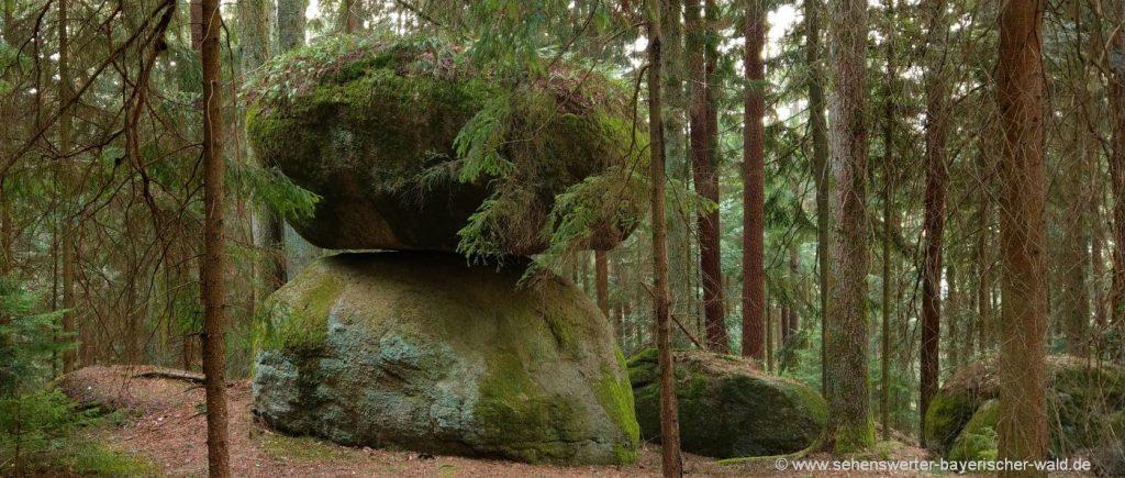 Michelsneukirchen Schwammerlstein bei Dörfling Wanderung am Grottenweg