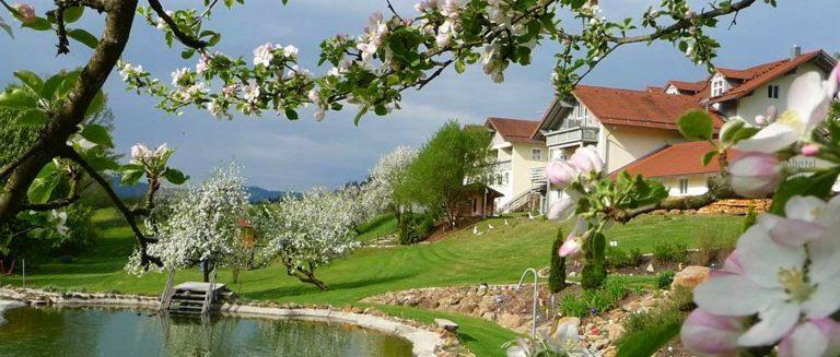 miethaner-landhotel-viechtach-see-bayerischer-wald-ansicht