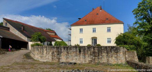 mitterfels-burgruine-straubing-schloss-ausflugsziele-niederbayern
