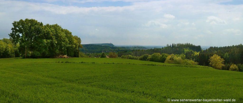 Aussichtspunkt Weingarten am Rundweg Perlbachtal