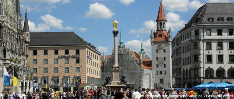 muenchen-sehenswuerdigkeiten-innenstadt-marienplatz-mariensaeule-panorama