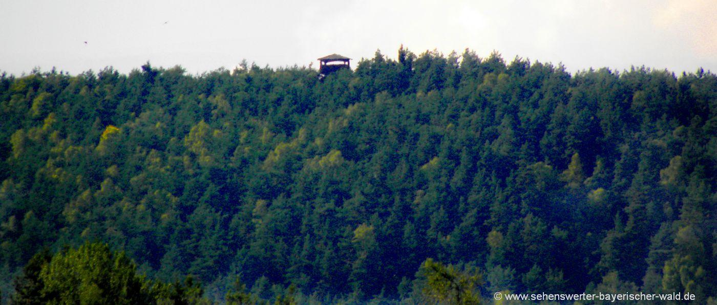 nabburg-aussichtsturm-am-kulm-wanderung-ausflugsziele-oberpfalz