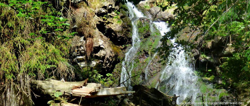 nationalpark-falkenstein-wanderung-urwaldgebiet-höllbachgspreng-wasserfall