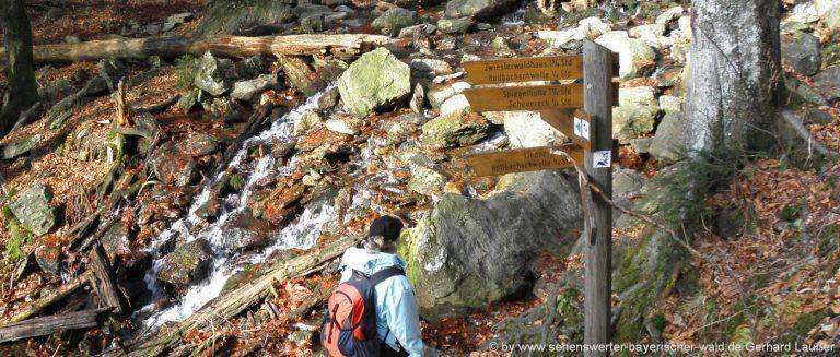 nationalpark-wandern-bayerischer-wald-rundwege-am-falkenstein-panorama-1400