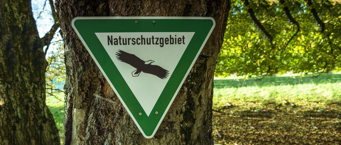 naturschutzgebiet-bayerischer-wald-niederbayern-oberpfalz