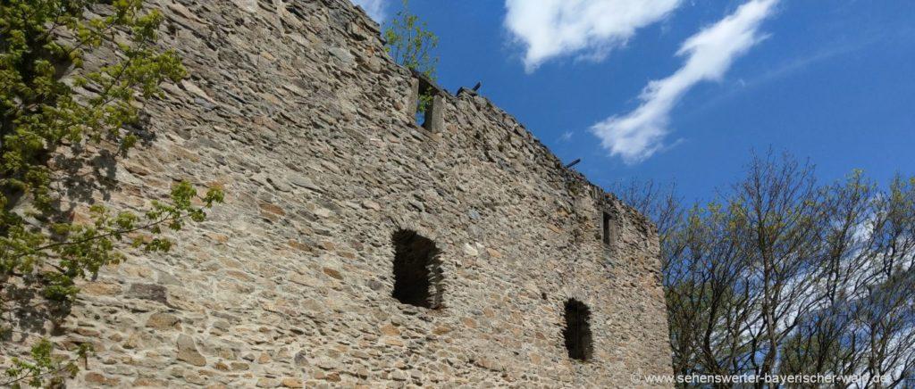 Burg Ruine Neuhaus Burganlage Cham in der Oberpfalz