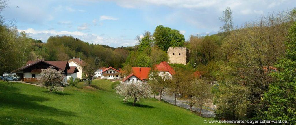 Sehenswürdigkeiten in Schorndorf Rundweg zur Burgruine Neuhaus
