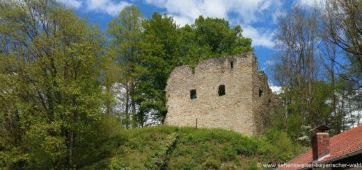 neuhaus-burgruine-schorndorf-burganlage-cham