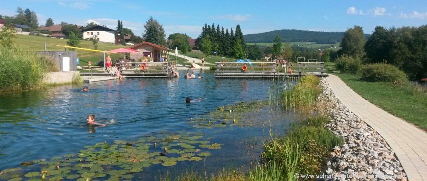 neukirchen-heilig-blut-naturbadesee-bayerischer-wald-naturbad