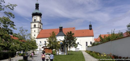 neukirchen-heilig-blut-wallfahrtsort-bayern-wallfahrtskirchen