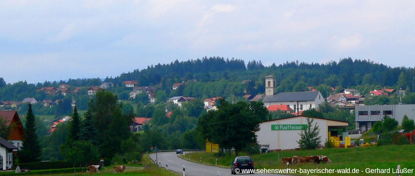 neureichenau-bayerischer-wald-ausflugsziel-ansicht-ort-panorama-1400