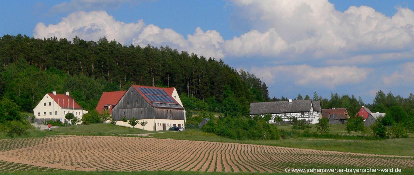 neusath-perschen-freilandmuseum-oberpfalz-freizeitangebote
