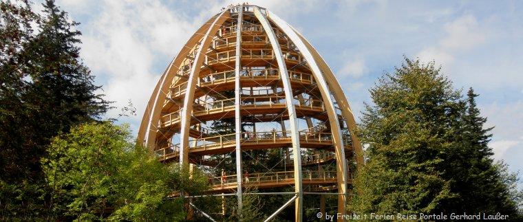 Sehenswürdigkeiten in Neuschönau Waldwipfelpfad Baumei