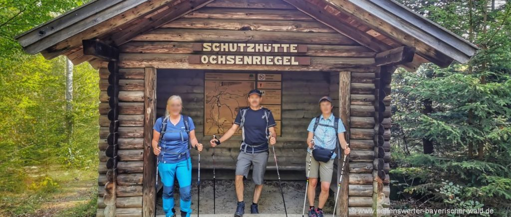Wandern zur Ochsenriegel Schutzhütte ab Wanderparkplatz Sagwassersäge