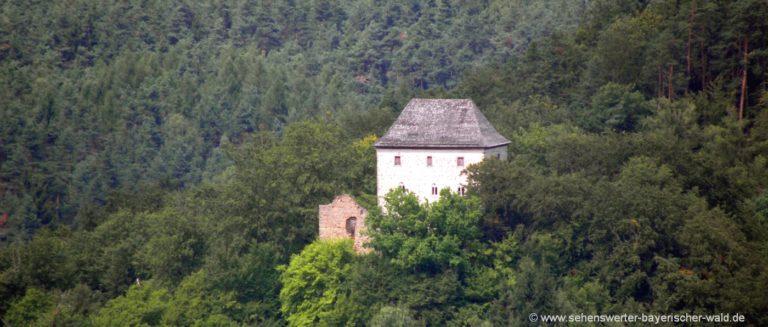 nittenau-burgruine-stockenfels-vom-aussichtspunkt-oberhalb-marienthal