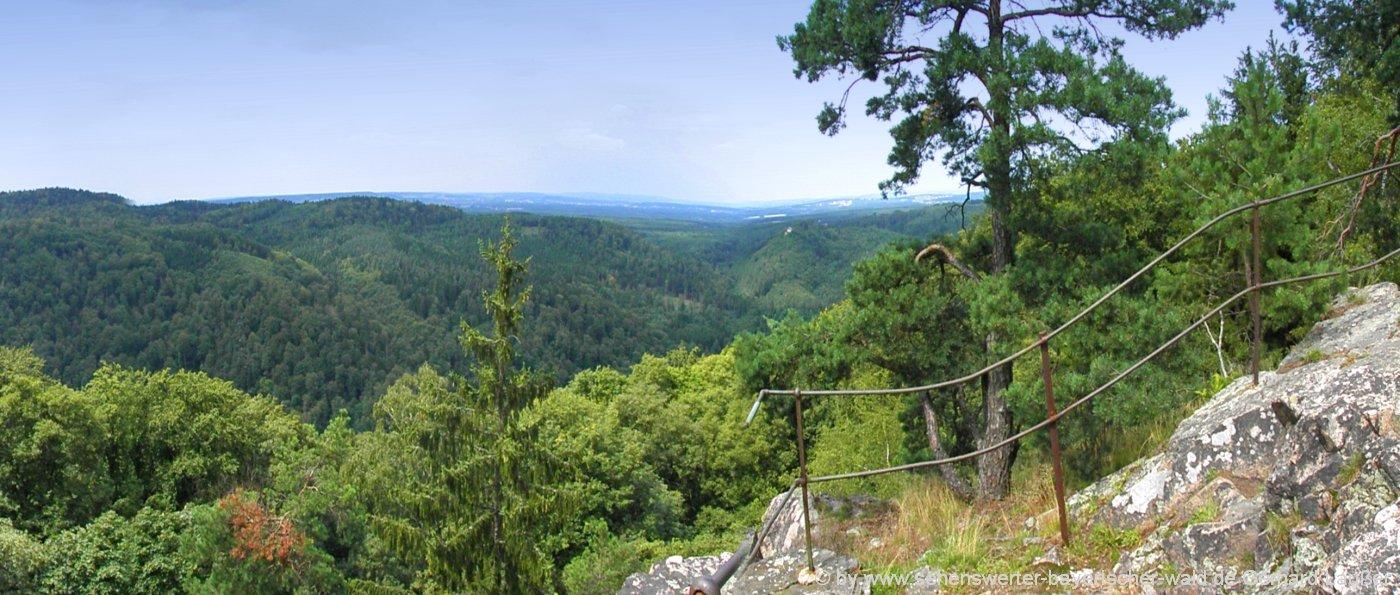 nittenau-wanderung-ab-marienthal-aussichtspunkt-regental-panorama