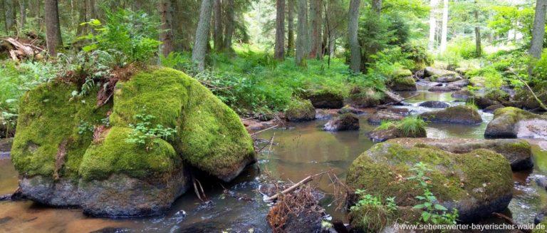 otterbachtal-rundwanderweg-regensburg-hammermuehle-bachlauf-steine