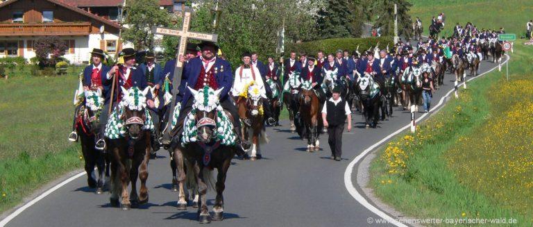 pfingstritt-bad-kötzting-pferde-bittprozession-pferdewallfahrt