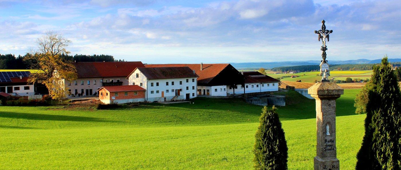 piendl-guthof-bauernhof-familienferien-oberpfalz-hofansicht