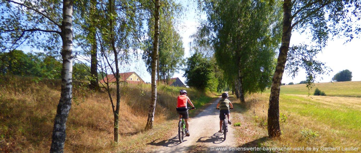 radfahren-bayerischer-wald-radtouren-niederbayern-radwege-freyung