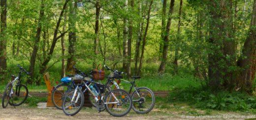 radfahren-landkreis-cham-radwege-bayerischer-wald-radtouren