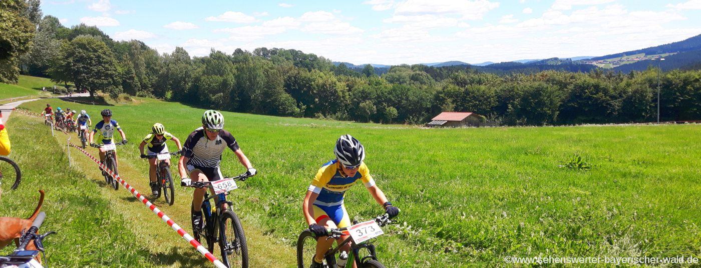 Radtouren im Bayerischen Wald, Radwege am Nationalpark und Mountainbike Touren im Bayerwald Zentrum