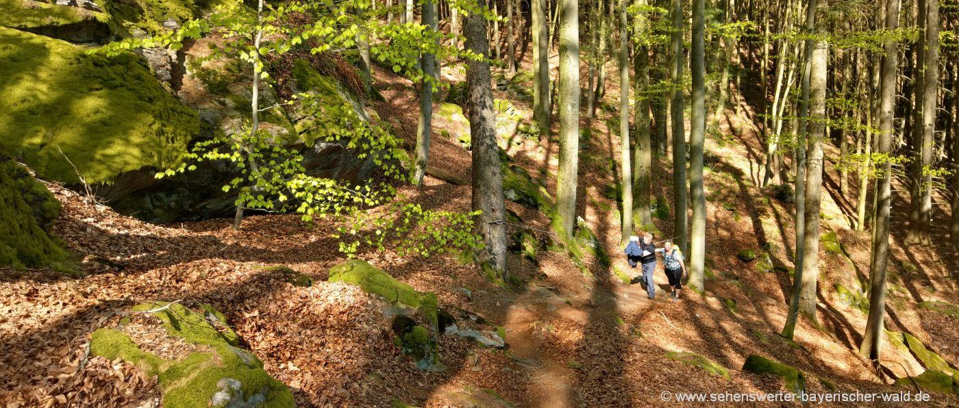 ränkam-rundwanderweg-kirschbaumriegel-bergwandern-tour