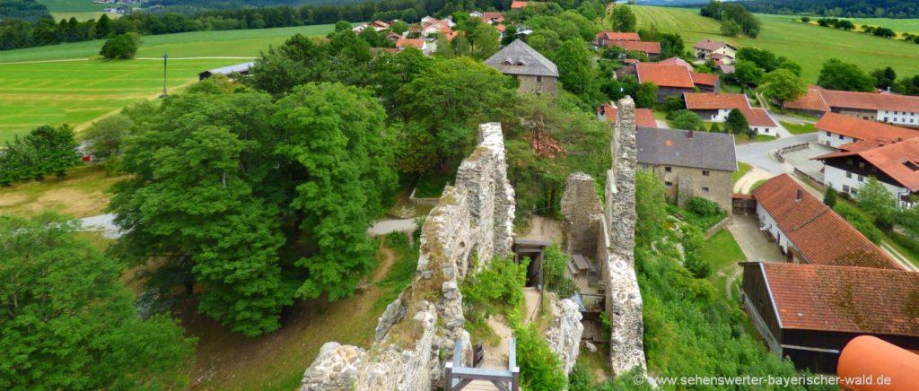 Wanderung am Pfahl bei Burg Weissenstein Aussichtsturm bei Regen