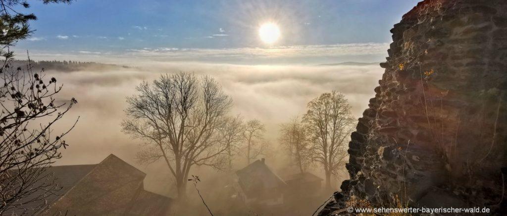 Wanderweg Burglehrpfad Weissenstein Burgruine am Pfahl Aussicht Nebel