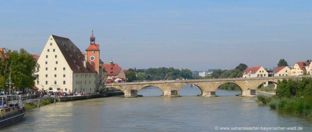 Highlights von Regensburg Salzstadl, Bruckturm, steinerne Bücke