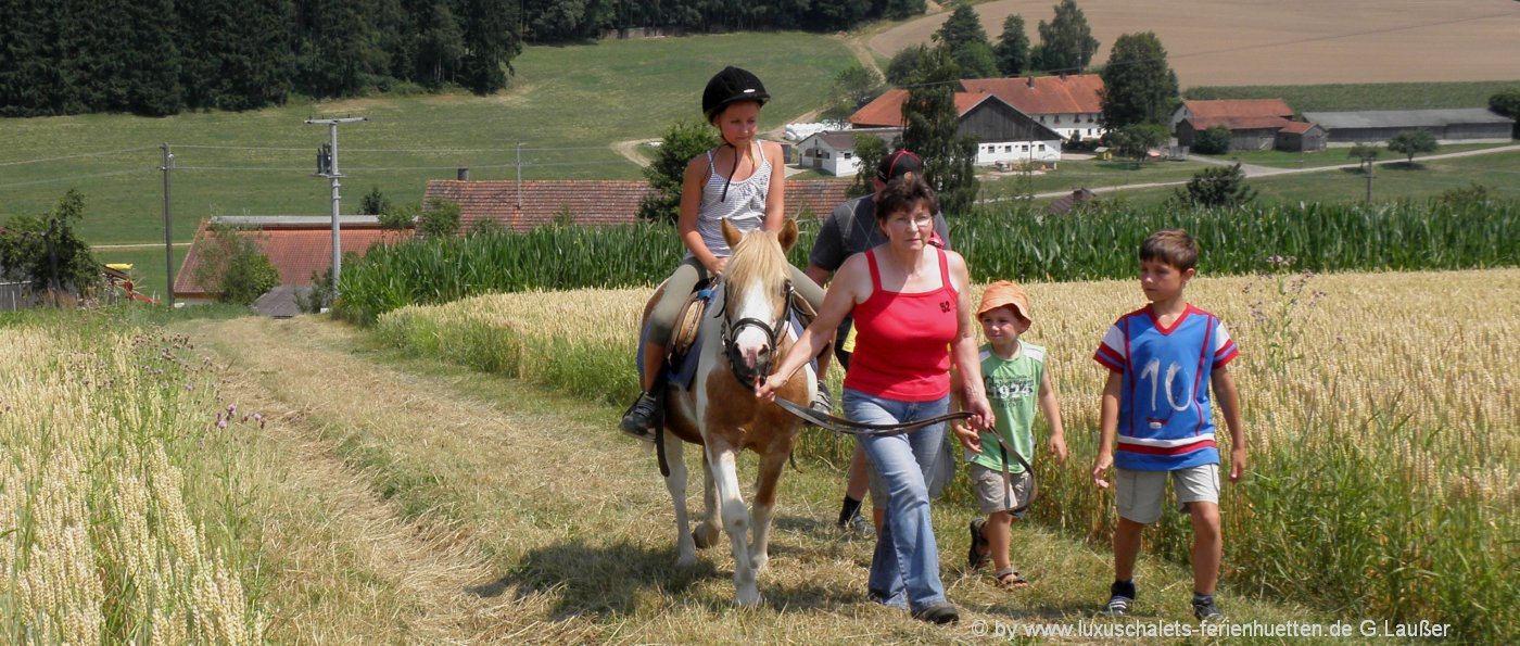 Reiterferien in der Oberpfalz Reiterhof mit Reitunterricht für Kids