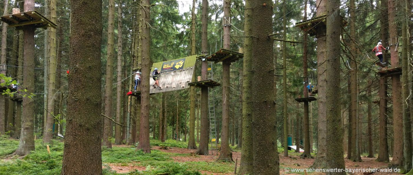 Firmenevent und Teambuilding im Hochseilpark in Niederbayern