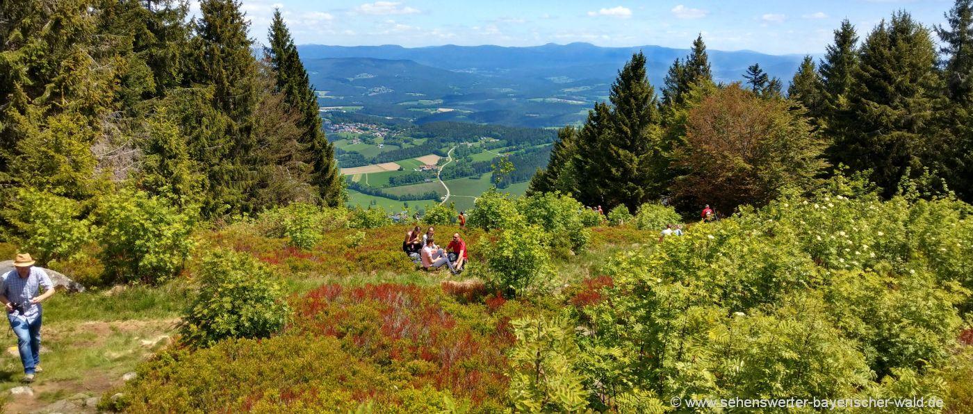 Wanderung ab Sankt Englmar zum Pröller Berg Gipfel Aussichtspunkt
