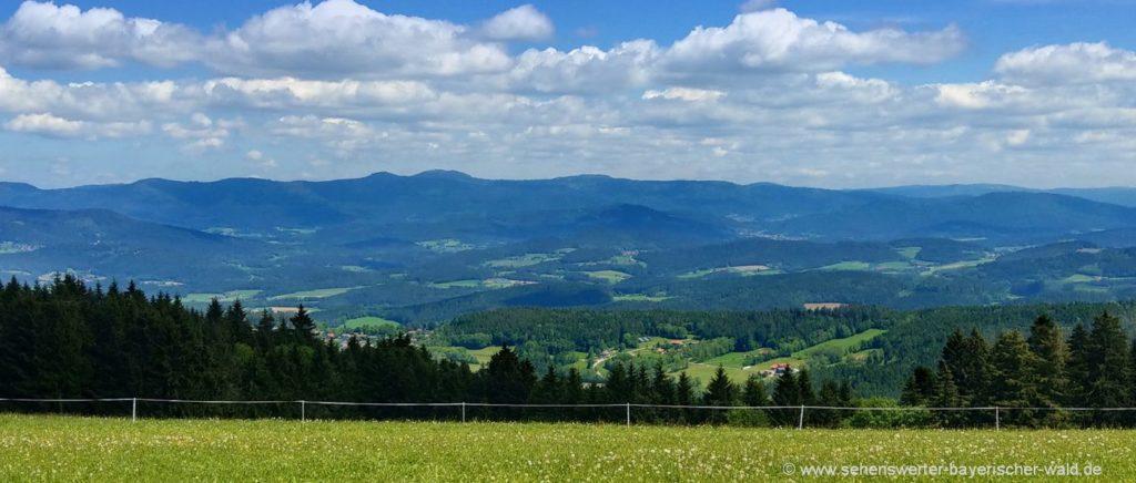 sankt-englmar-kaesplatte-rundweg-bayerischer-wald-landschaft-aussicht