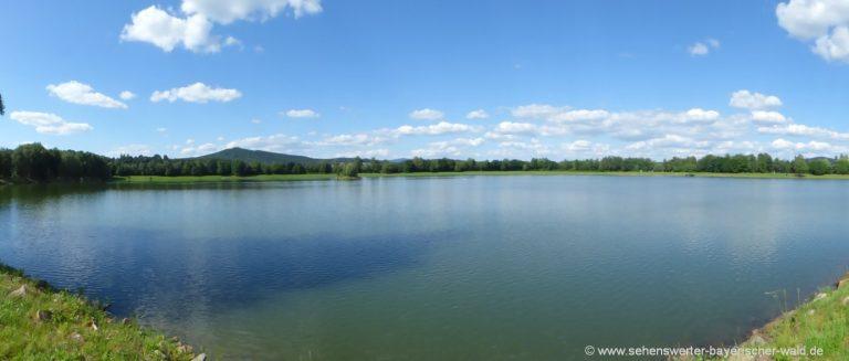 Bayerischer-wald-satzdorfer-see-cham-ausflugstipp-oberpfalz-baden
