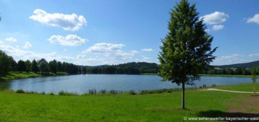 satzdorfer-see-rundweg-länge-wandern-cham-liegewiese