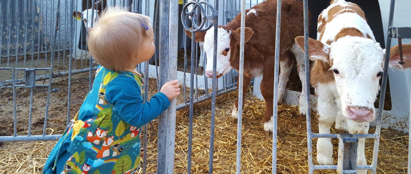 Urlaub am Bauernhof in Waldkirchen Ferienwohnungen für Familienurlaub