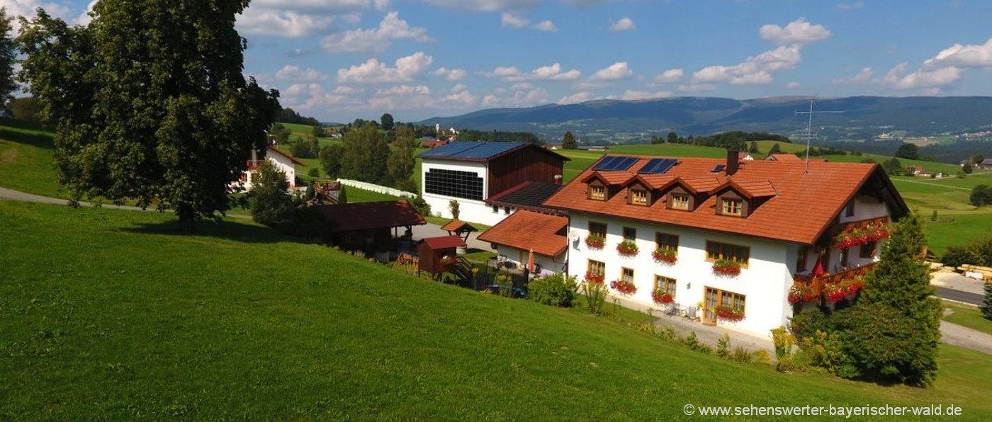 schauberger-dreiländereck-bauernhofurlaub-breitenberg-ferienhaus