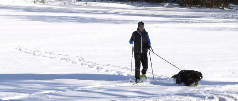 Schneeschuhtouren Bayerischer Wald Schneeschuhwandern und Winterwanderung